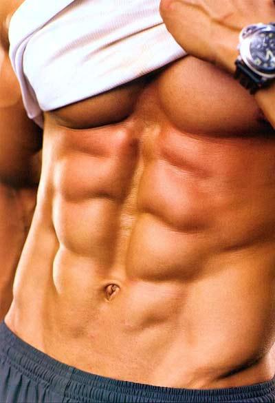 عضلات شش تکه شکم