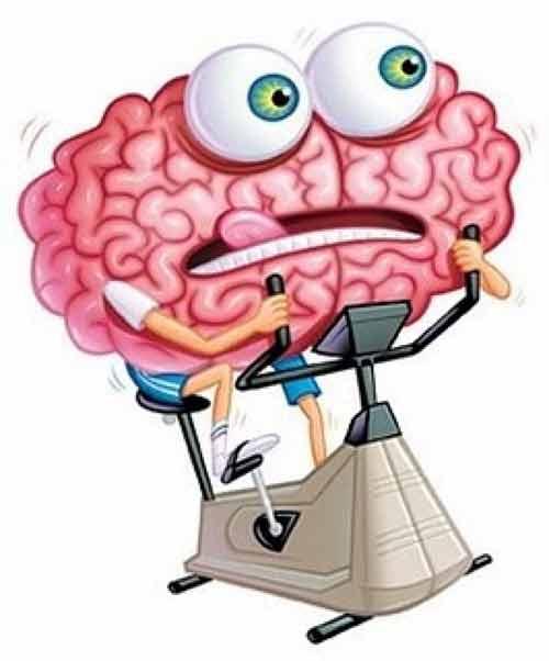 تقویت مغز و قوای ذهنی
